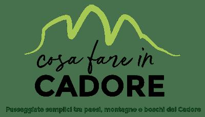 logo con payoff sito cosafareincadore