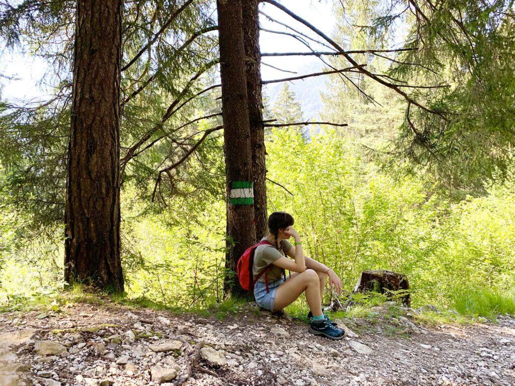 Auronzo passeggiata bosco Bersaglio