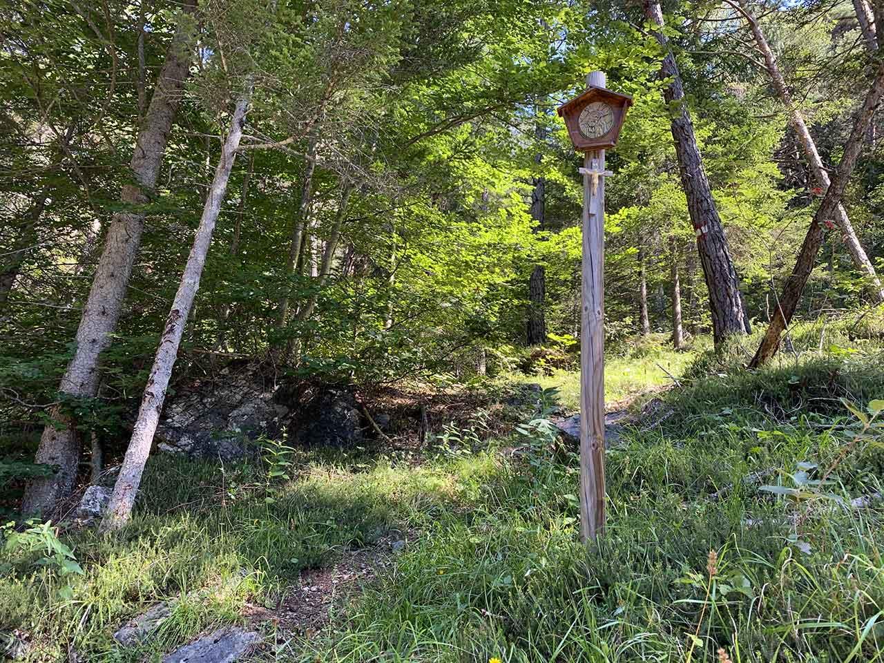 auronzo-capitello-lungo-sentiero-bosco-bersaglio