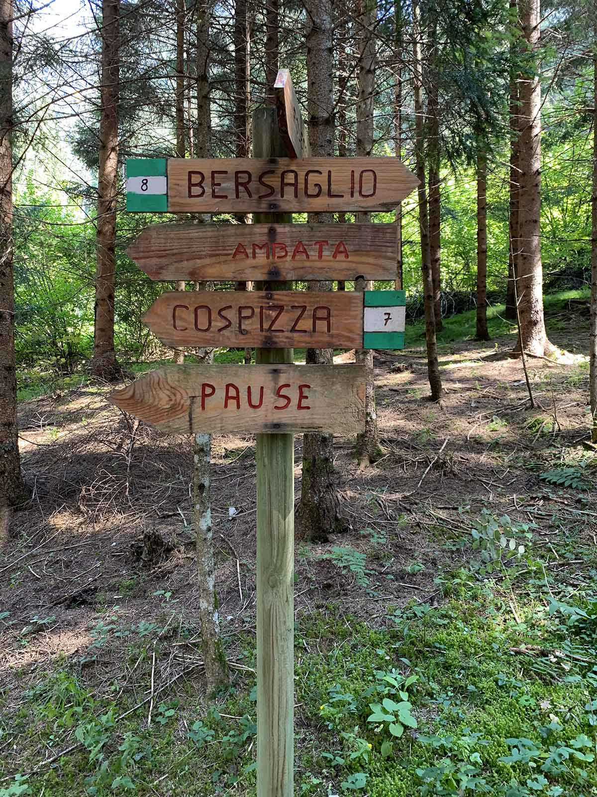 auronzo-sentiero-bersaglio-cai-8