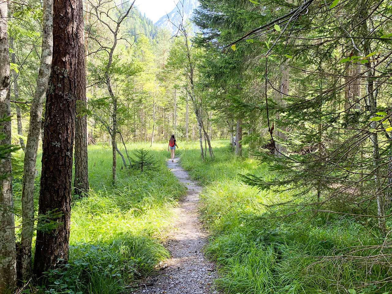 Pralongo - Auronzo passeggiata verso torrente Ansei