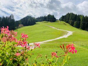 Auronzo paseggiata verso il Monte Agudo dal Bar Ski Malon