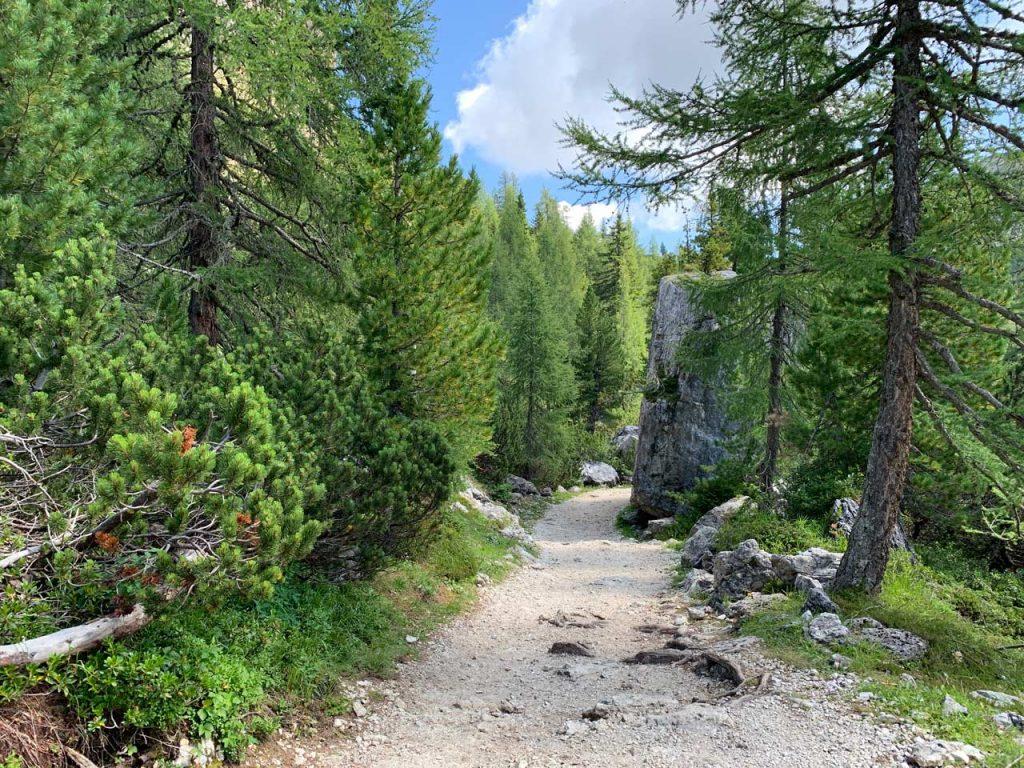 13-sentiero-120-misurina-col-de-varda-rifugio-citta-di-carpi