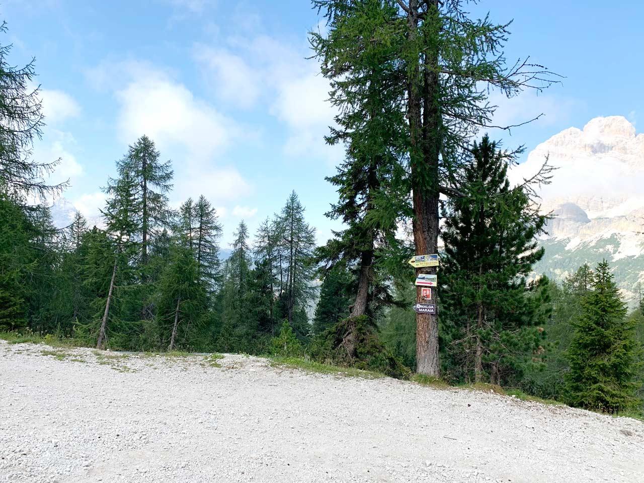 5-segnavia-sentiero-misurina-col-de-varda-rifugio-citta-di-carpi