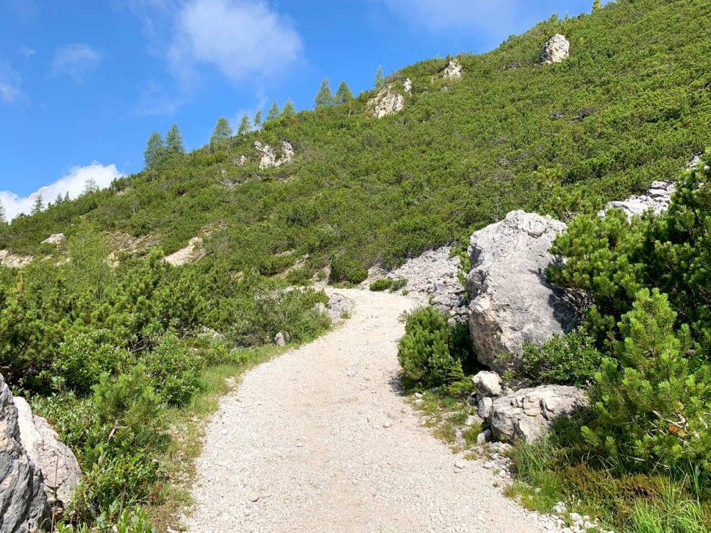 9-prima-parte-sentiero-misurina-col-de-varda-rifugio-citta-di-carpi