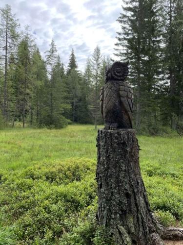 Torbiera di Danta - sculture di legno