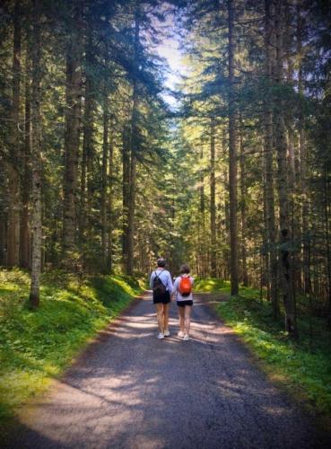 Pralongo - Auronzo percorso a piedi tra i boschi
